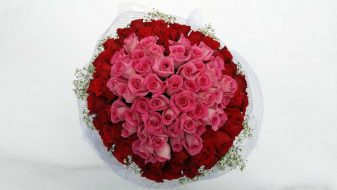 Glamorous 99 red & pink roses bouquet