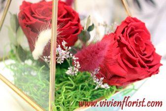 Red eternal roses in gold geometric vase