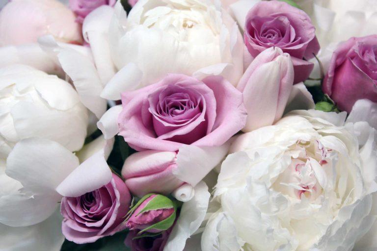 GentlePinkFreshBouquet-Rose