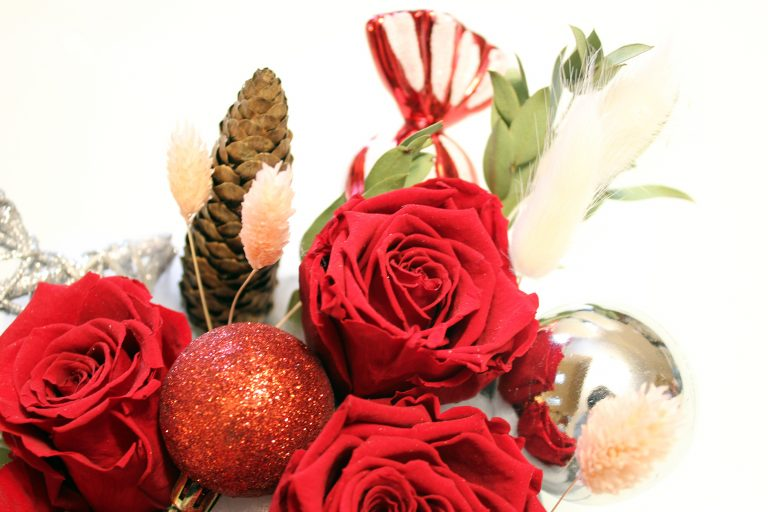 Red preserved roses in holiday box